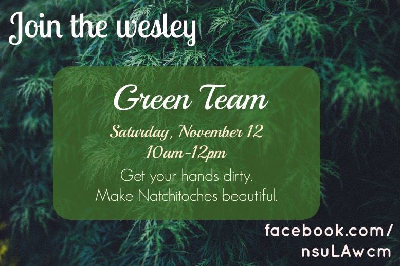 Green Team November 12